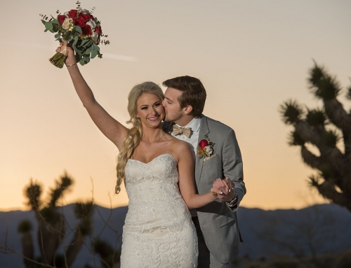 Las Vegas Wedding Planning by Anne & Lance